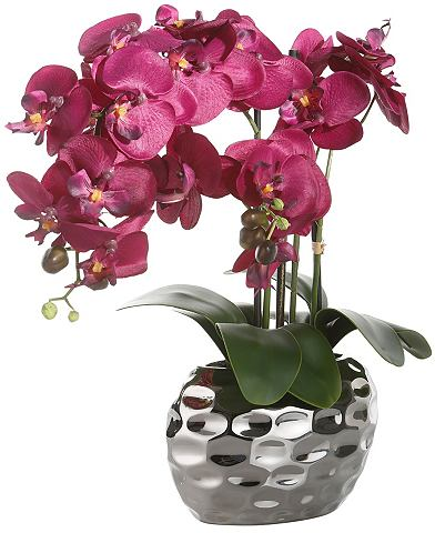 HOME AFFAIRE Kunstplant Orchidee