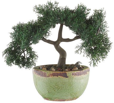 HOME AFFAIRE Kunstplant Bonsai in set van 2