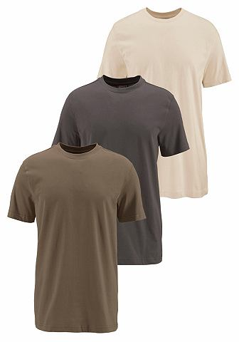 Grey Connection T-shirt 2+1 gratis