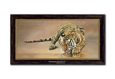 XXL-artprint, PREMIUM PICTURE, 'Tijger', 115x65 cm