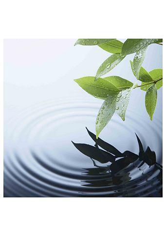 Print op glas in 2 afmetingen en 4 motieven 'Waterpartij'
