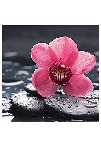 Glazen artprint, Artland, 'Still life with pepple and macro of orchid with water drops', in 2 afmetingen